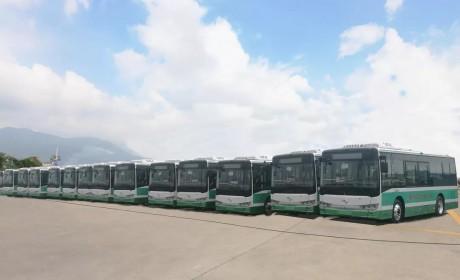 """助推广州实现公交电动化,超百辆金龙纯电动客车开进""""花城"""""""