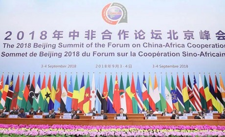 中非合作论坛宇通客车获非洲政要点赞,15年深耕与非洲国家合作共赢