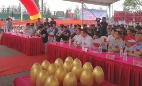 高效物流而来,骏铃绿通节油王沧州成功上市