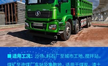 陕汽重卡新 M3000 8×4纯电动自卸车 岂止了得