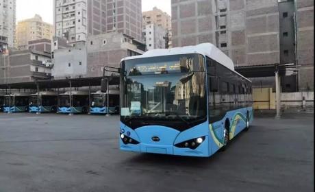 外媒:亚历山大将成为埃及第一个采用纯电动大巴的城市