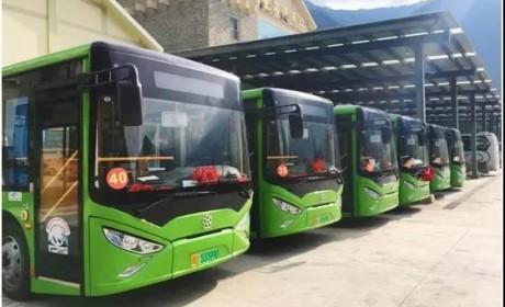"""""""绿巨人""""银隆新能源经典公交车入驻九寨沟"""