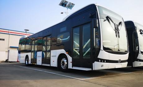 再获哥伦比亚379台订单,比亚迪电动大巴在美洲最大订单被刷新