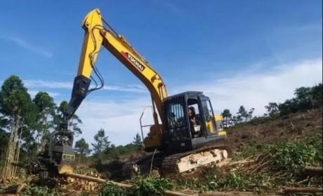 玉柴重工与广西最大林场签约合作
