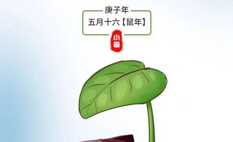 """陕汽重卡丨夏季清凉包:避暑有道,无惧""""烤""""验"""