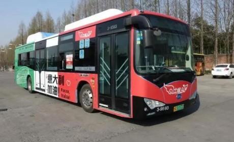 杭州比亚迪公交车——中意巴士,化身爱情助攻,为爱发电