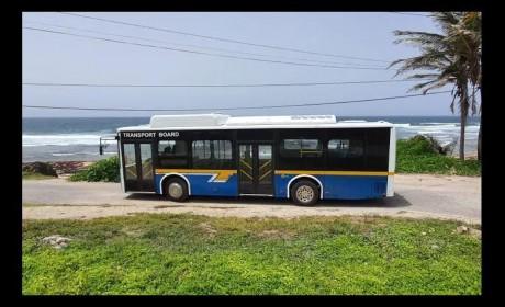 海滩、美食、蕾哈娜,快上车,比亚迪客车带你去逛加勒比海!