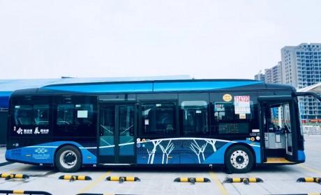 领航新时代绿色公交,首批全新比亚迪纯电动客车投运深圳