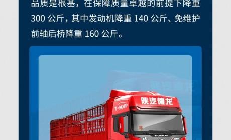 绿通运输致富有什么奥秘?德龙X5000绿通载货车告诉你