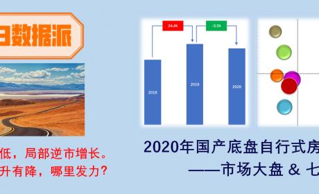整体销量仍未破万,华东用户购买力最强,2020年国产底盘自行式房车市场简析