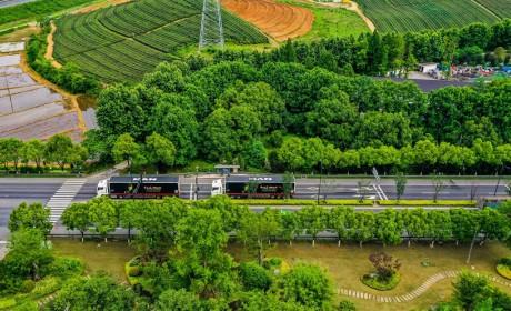 数字赋能 降本增效 2021曼恩全新TGX全国路演杭州站圆满完成